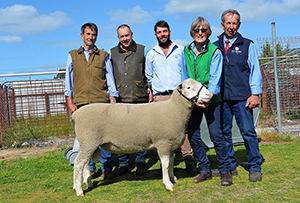 Final combined Leenala and Wrattenbullie sale goes gangbusters